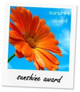 sunshine award blog, blog awards, blogger awards